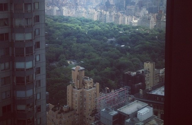 View of Central Park from the Conference Room