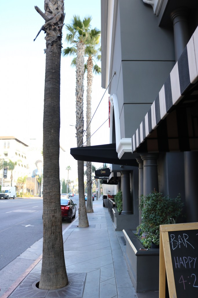 the grafton hotel review sunset strip west hollywood los angeles lovely in la blogger lifestyle travel