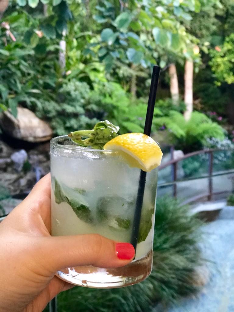 Cavatina Sunset Marquis Cocktail Reviews